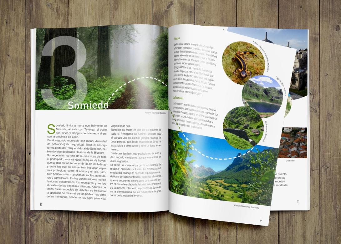 Presentación Final Asturias